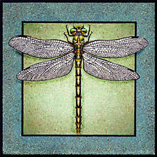 Dragonfly painted on ceramic tile.