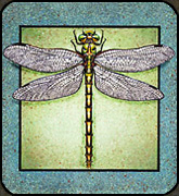 Painted Tile with Dragonfly by Holly Benay Cutting