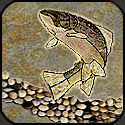 Mosaic fish leaping with natural river rock.